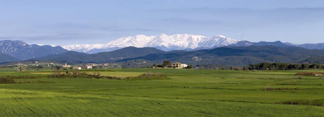 Montanyas