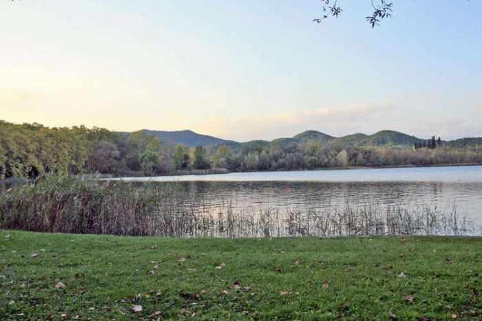 Una vista a través del llac