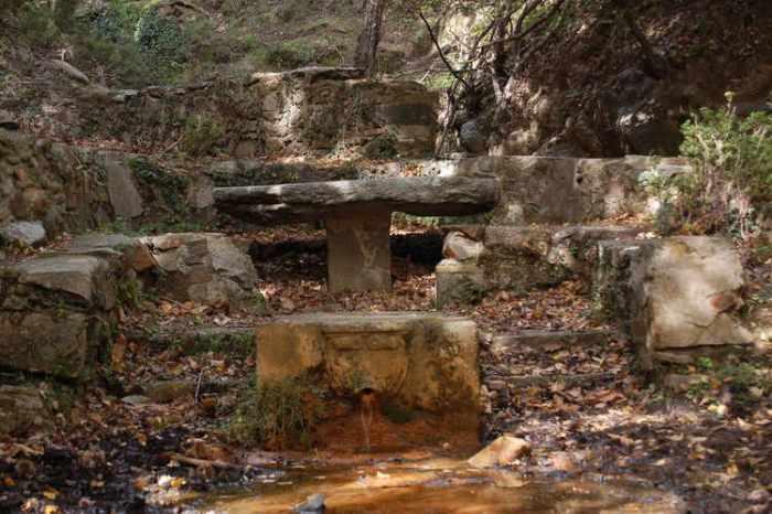 Una font al bosc